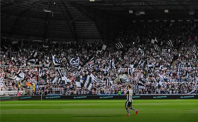 newcastle v brentford