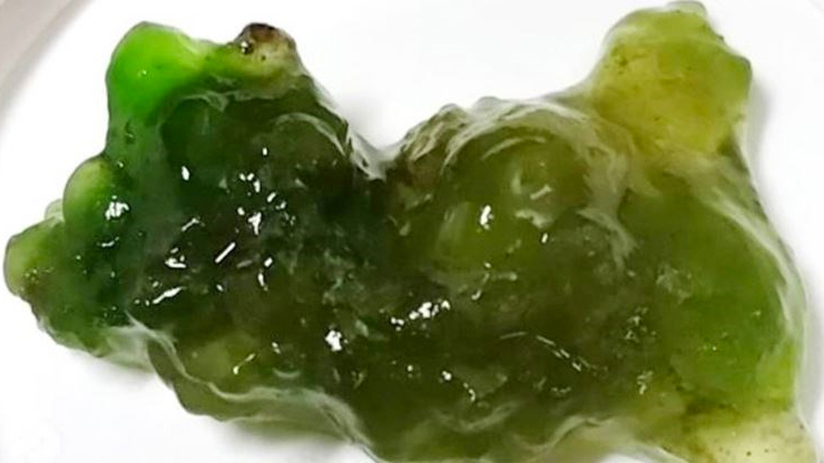 Green Jelly Blob