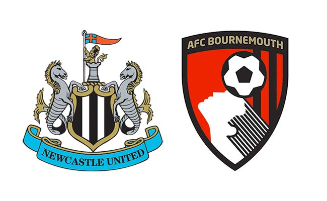 newcastle v bournemouth player ratings